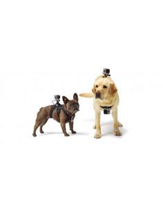 GoPro kameros diržai šuniui
